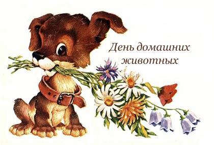 Развиващие задания. Открытки на Всемирный день домашних животных Добрые открытки на Всемирный день домашних животных скачать бесплатно. Открытки с днем домашних животных скачать бесплатно. Электронные открытки с животными. Добрые открытки на Всемирный день домашних животных. Анимационные открытки на день домашних животных.