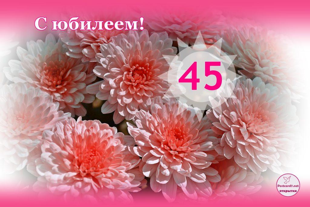Поздравления с днем рождения сотруднице 45 лет