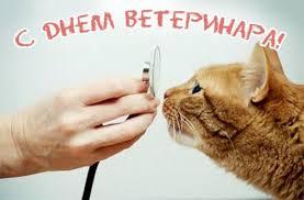 Развиващие задания. Открытки с днем ветеринара Поздравительные открытки с днем ветеринара скачать бесплатно. Прикольные открытки на день ветеринара. Поздравления с днем ветеринара gif. Открытки с днем ветеринара скачать бесплатно. Оригинальные открытки на профессиональные праздники.