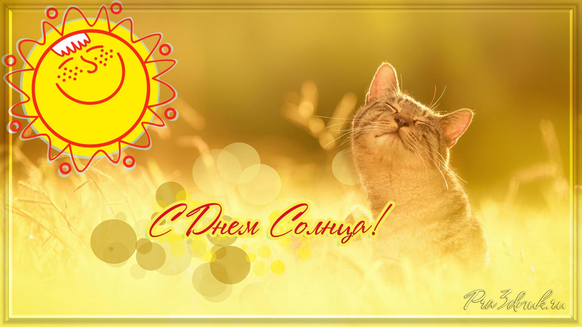 Поздравительная открытка с солнышком